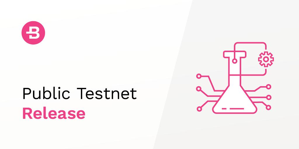 The Bytecoin Public Testnet Release