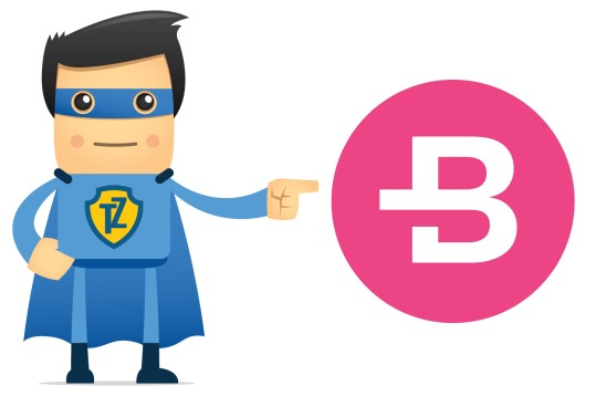 Bytecoin X Trust.Zone VPN Partnership