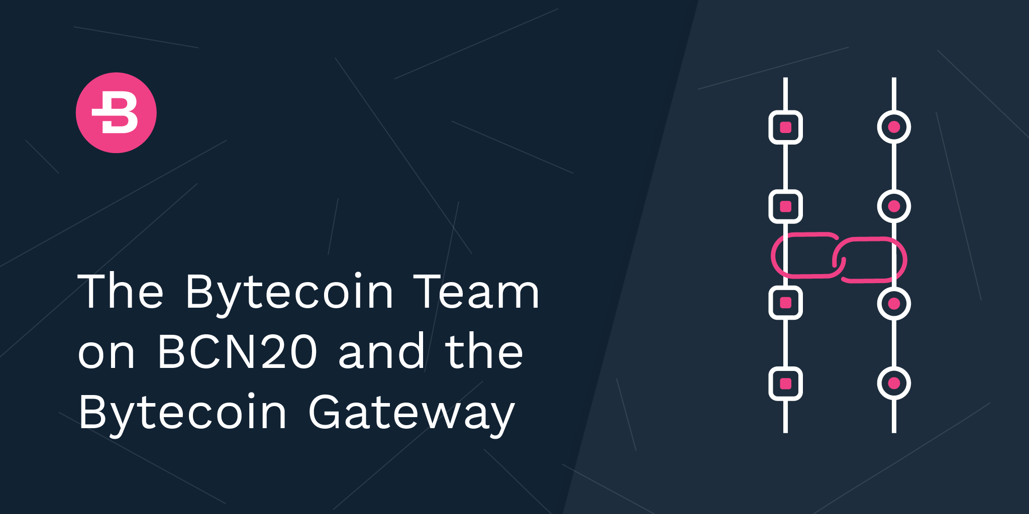 The Bytecoin Team on BCN20 and the Bytecoin Gateway